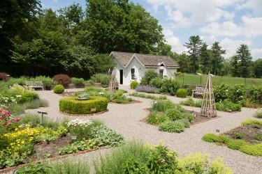 JJH-herb-garden